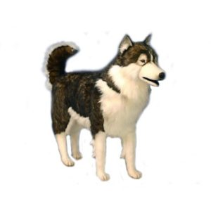"HUSKY DOG BLK/BEIGE 45""L Plush Toy"