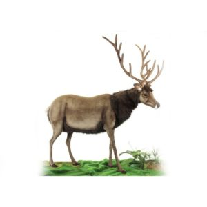 "MALE DEER EXL 83""H X 79""L Plush Toy"