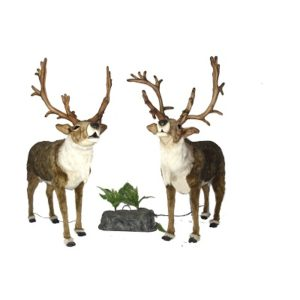 """Life-size and realistic plush animals.  0728 - 2 PCS DEER NORDIC 65"""" SING DUET"""