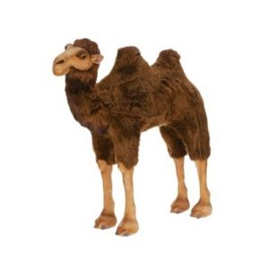 Life-size and realistic plush animals.  2062 - CAMEL RIDE-ON 37''