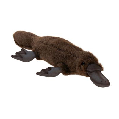 PLATYPUS 16''L Plush Toy