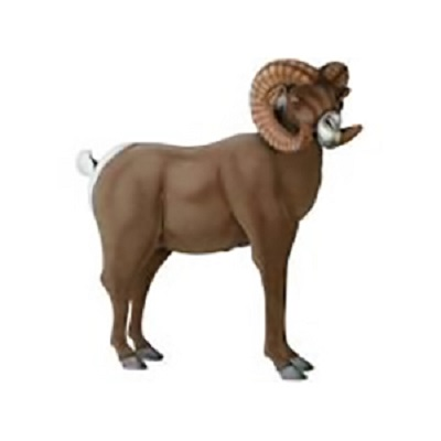 Life-size and realistic plush animals.  3673 - BIG HORN RAM 37X41''