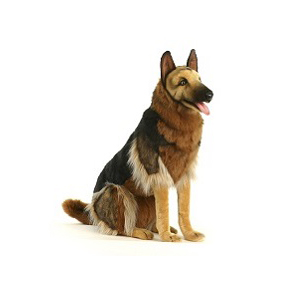 "GERMAN SHEPHERD SEATED 34""H Plush Toy"