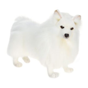 GERMAN SPITZ-AKITA 14'' Plush Toy