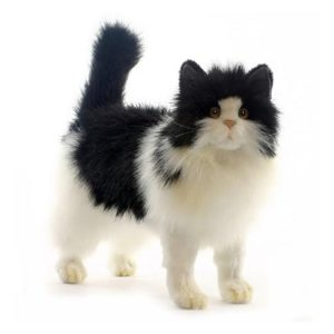 Life-size and realistic plush animals.  4221 - CAT