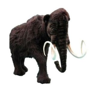"MAMMOTH 90""L X70''H (SP) Plush Toy"