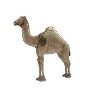 """Life-size and realistic plush animals.  4678 - CAMEL ANDROMEDA 59""""L X 5'8""""H"""