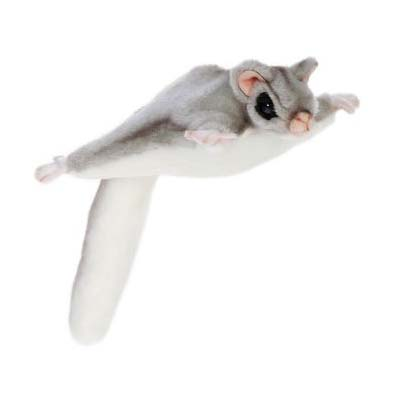 SUGAR GLIDER 10'' Plush Toy