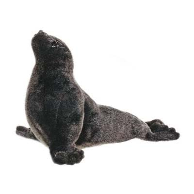 SEA LION CUB 14''L Plush Toy