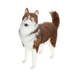 HUSKY DOG LIFE SZ 46''L Plush Toy