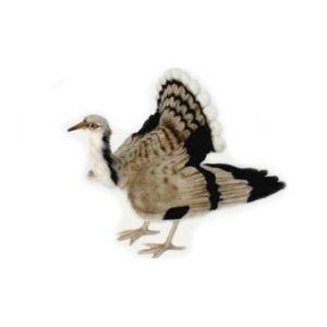 HOUBARA BUSTARD BIRD16.5'' Plush Toy