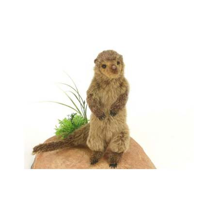 "DWARF MONGOOSE 15.3""L (SP) Plush Toy"