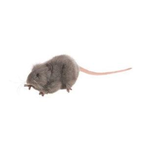Life-size and realistic plush animals.  5579 - MICE