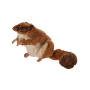 LEADBETTER POSSUM 10''L Plush Toy