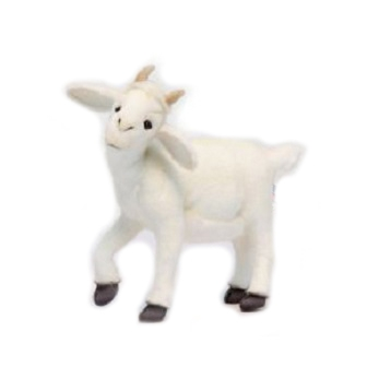 Life-size and realistic plush animals.  6185 - BABY WHITE GOAT 14.5''L