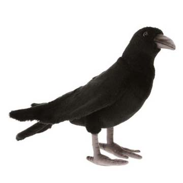 "BLACK CROW 12.1""L Plush Toy"