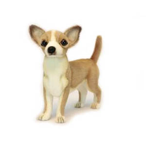 Life-size and realistic plush animals.  6295 - CHIHUAHUA PUPPY 11''L