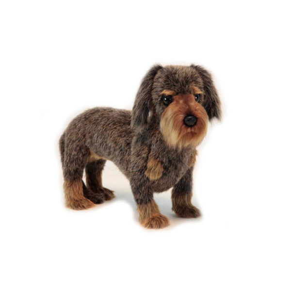 """Life-size and realistic plush animals.  6325 - DACHSHUND (LONG HAIRED) 13""""L"""