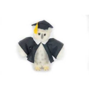 WHT GRADUATION OWL7''(SP) Plush Toy