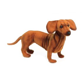 """Life-size and realistic plush animals.  6420 - DACHSHUND STANDING  16.6""""L"""