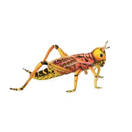 "GRASSHOPPER   13.8""L Plush Toy"