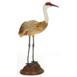 Life-size and realistic plush animals.  6772 - CRANE W/STAND 30''