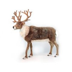 """Life-size and realistic plush animals.  6916 - NORDIC REINDEER 47""""H"""