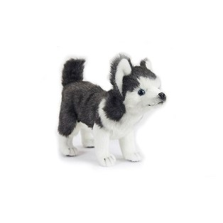 """Life-size and realistic plush animals.  6970 - HUSKY PUP STANDING 11""""L"""