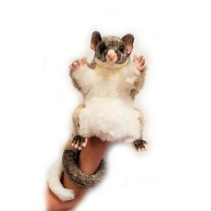 "BRUSH TAILED POSSUM HAND PUPPET 17.5""H Plush Toy"