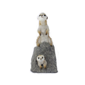Life-size and realistic plush animals.  0781 - 2 PCS MEERKAT PLAYING ON ROCK (4576