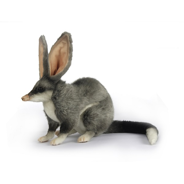 """Life-size and realistic plush animals.  7445 - BILBY 12.8"""" L"""