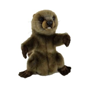 """Life-size and realistic plush animals.  7959 - BEAVER PUPPET   15.2""""L"""