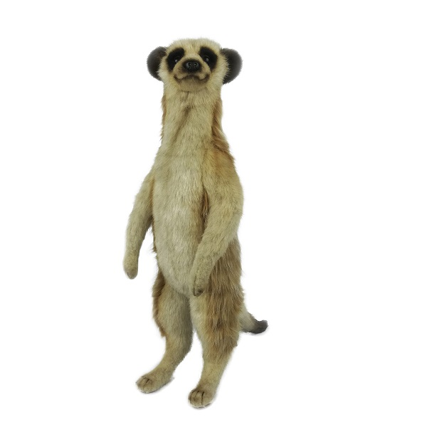 """Life-size and realistic plush animals.  7884 - MEERKAT 18""""H"""