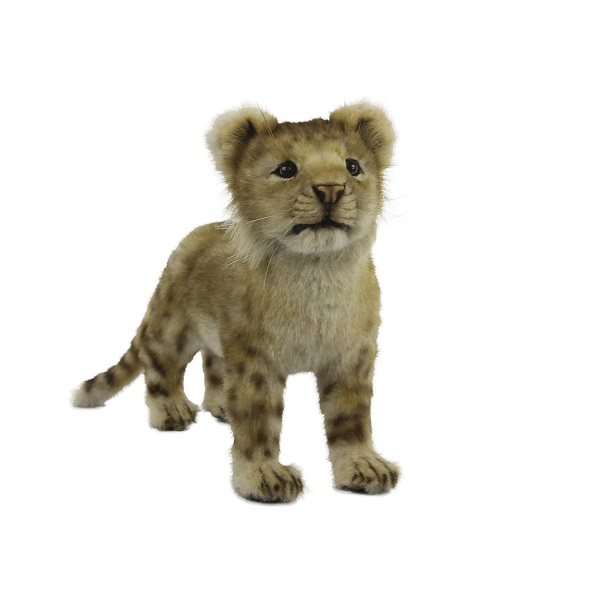 """Life-size and realistic plush animals.  7893 - LION CUB STANDING 15.75""""L"""