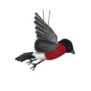 Life-size and realistic plush animals.  8115 - BULL FINCH FLYING